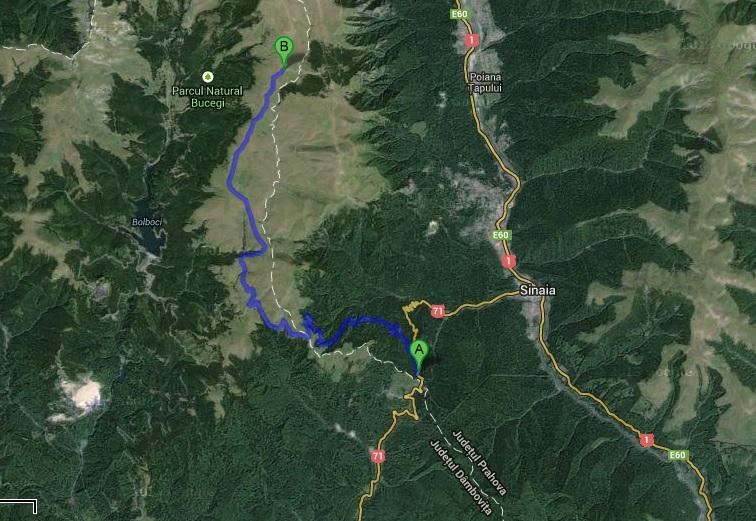 Drumul Babelor Transbucegi Sau Cum Ajungi Cu Masina Pe Platoul