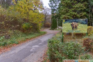 Drumul spre Rezervatia de Zimbri Hateg