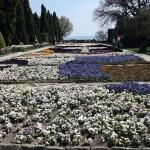 Gradina-Botanica-Balchik04