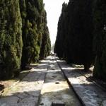 Gradina-Botanica-Balchik05