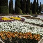 Gradina-Botanica-Balchik09
