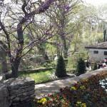Gradina-Botanica-Balchik11