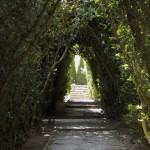 Gradina-Botanica-Balchik17