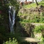 Gradina-Botanica-Balchik22