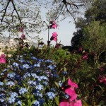 Gradina-Botanica-Balchik23