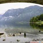 Alpii sloveni