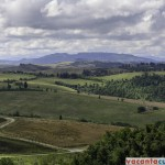 Si mai multa Toscana