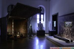 Muzeul de Istorie a Moldovei, Palatul Culturii
