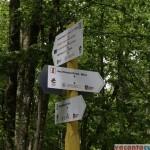 Aici se intersecteaza toate cele trei variante de traseu spre Lacul Dracului - mai ai 800 de metri