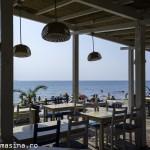 Plaja Topola