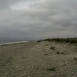 Plaja salbatica